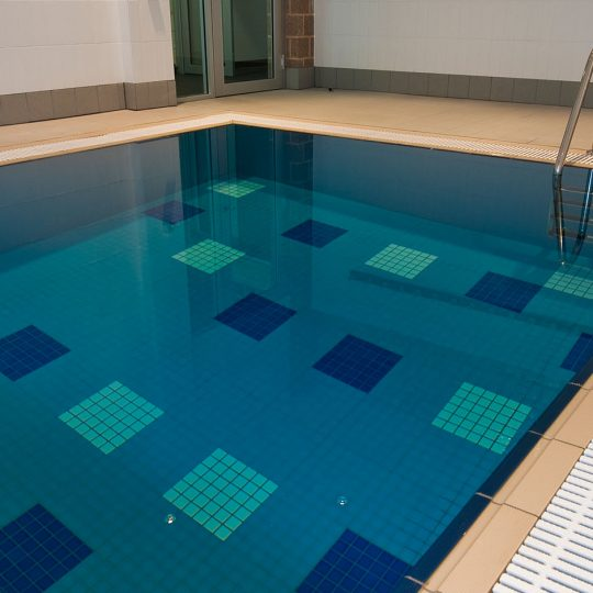 https://ggtiling.com.au/wp-content/uploads/2016/06/Adelaide-Football-Club-G-G-Tiling_0003_Adelaide-Football-Club-pool-surround-only-540x540.jpg
